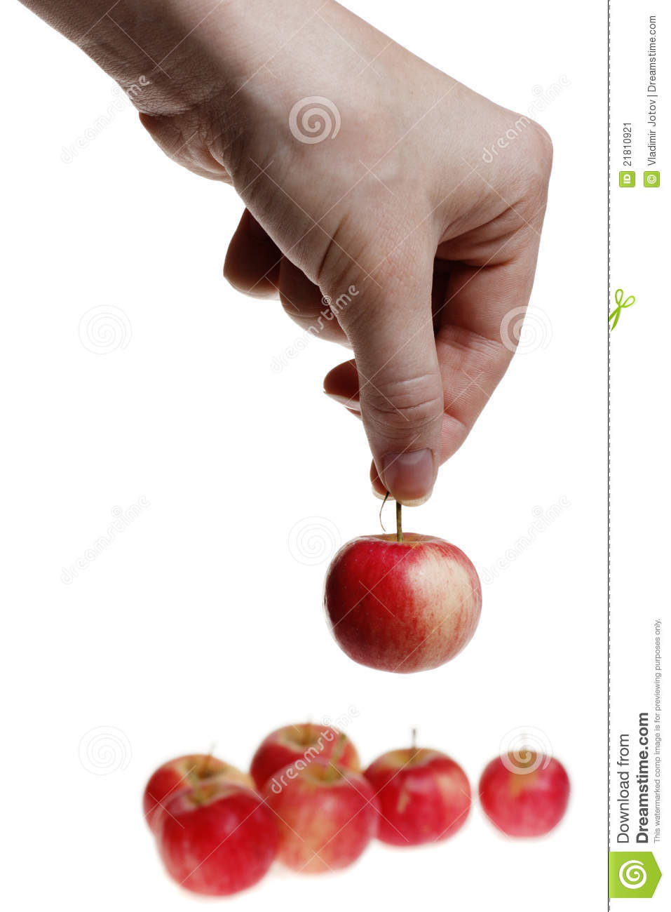 Holding A Small Red Apple Stock Image Image 21810921