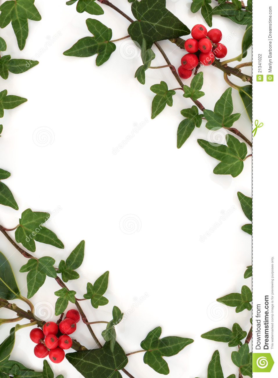 Holly And Ivy Abstract Frame Stock Photography Image
