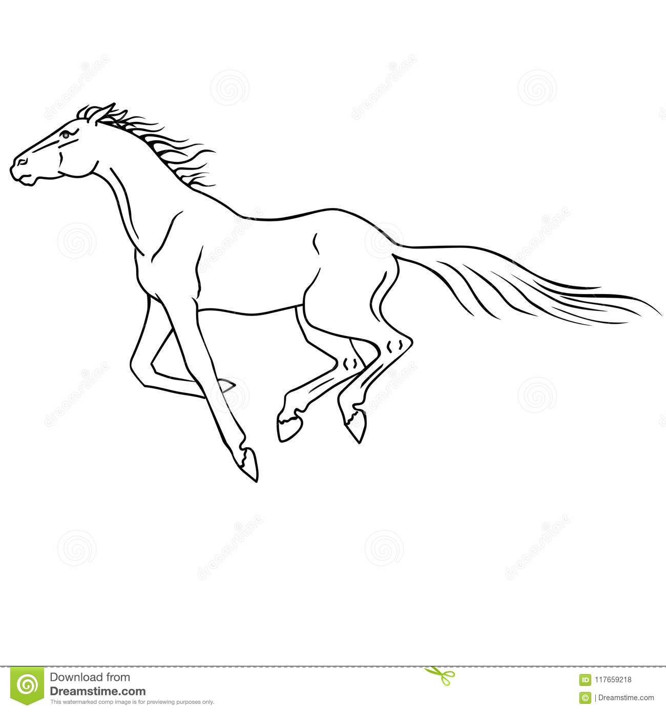 The Horse Galloping Galloping Line Drawing For Coloring