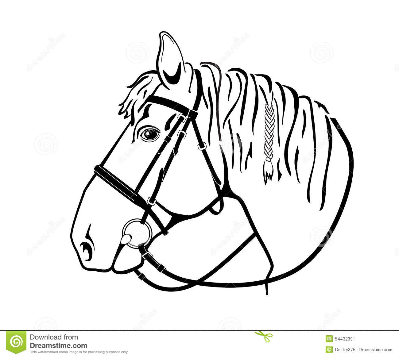 Horse Head In Harness Black And White Drawing Stock Image
