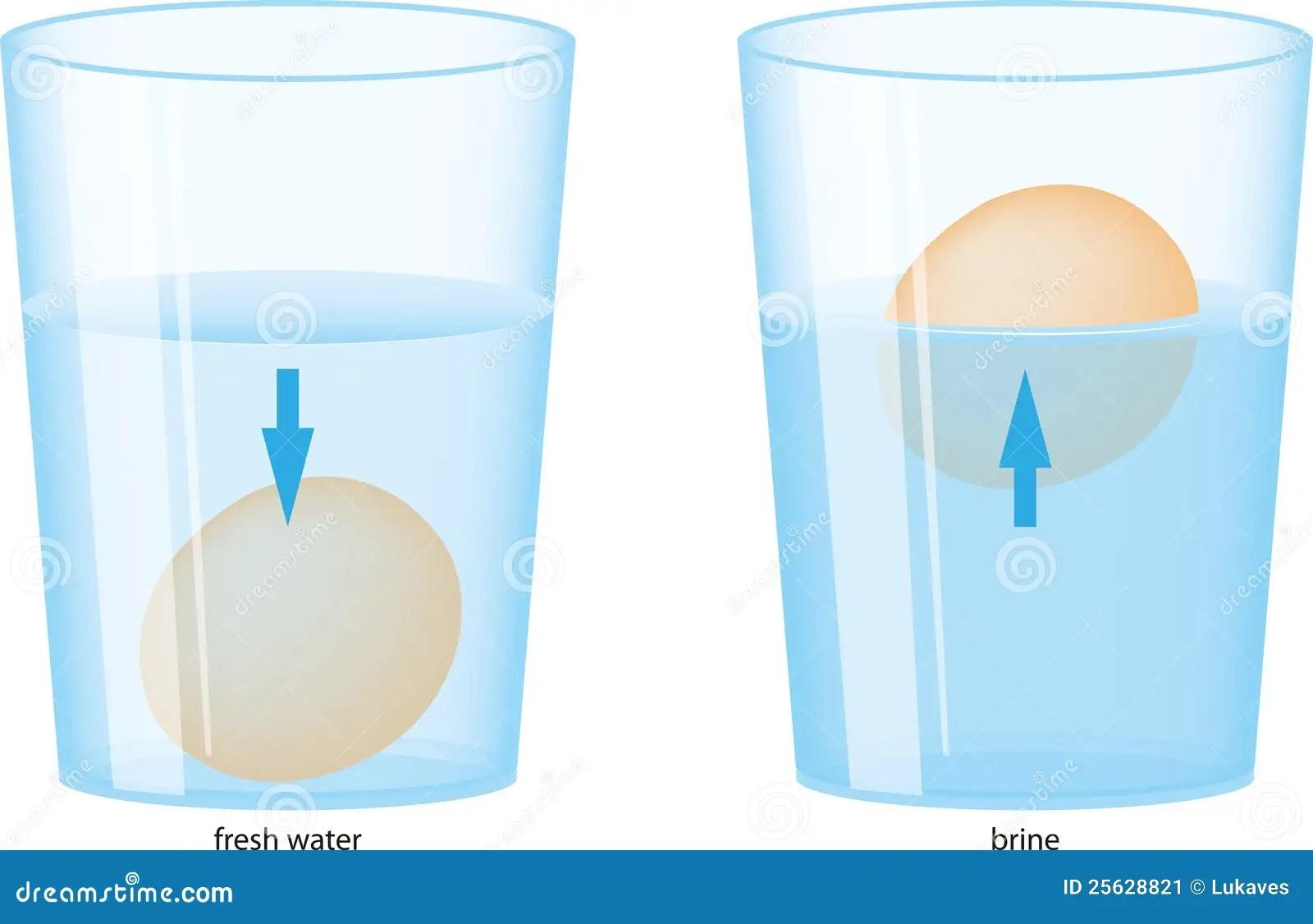 Huevo Y Agua Imagen De Archivo