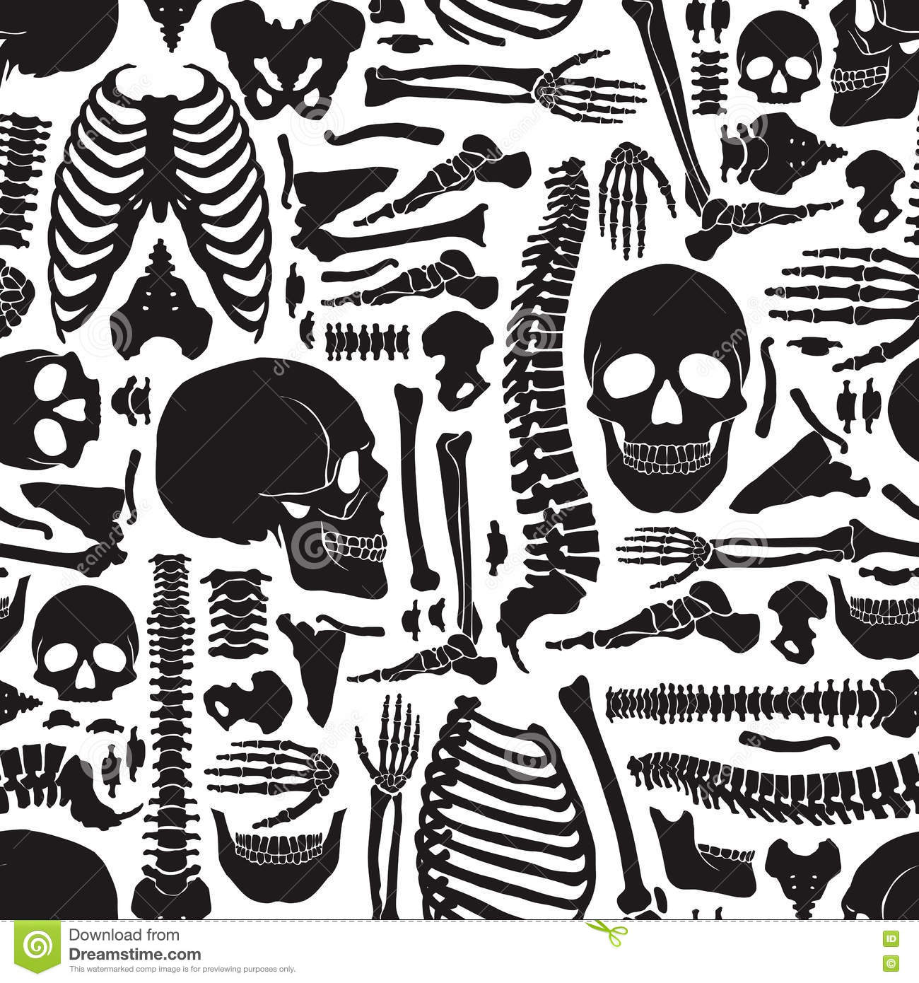 Human Bones Skeleton Pattern Stock Vector