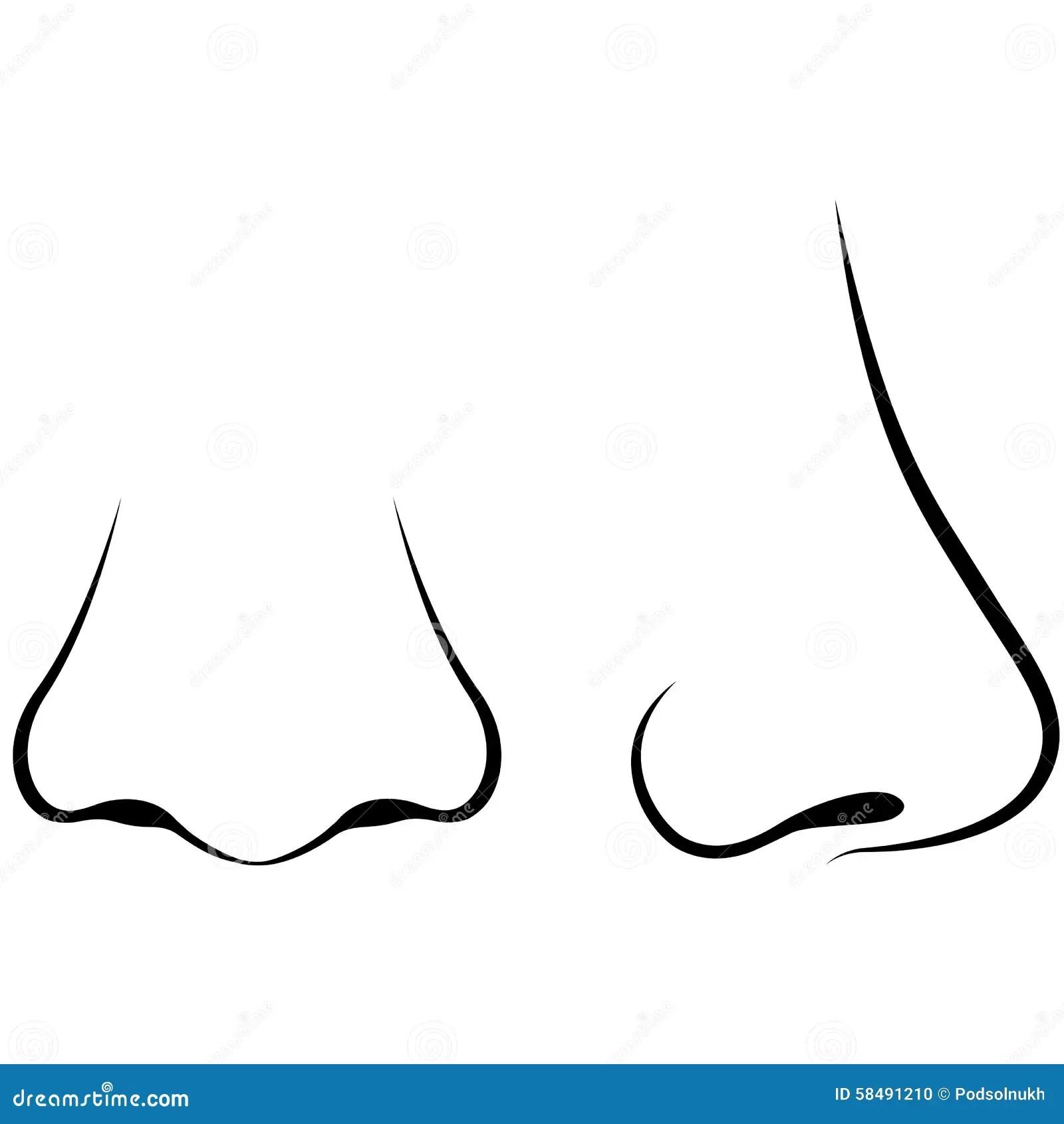 Human Nose Stock Illustration