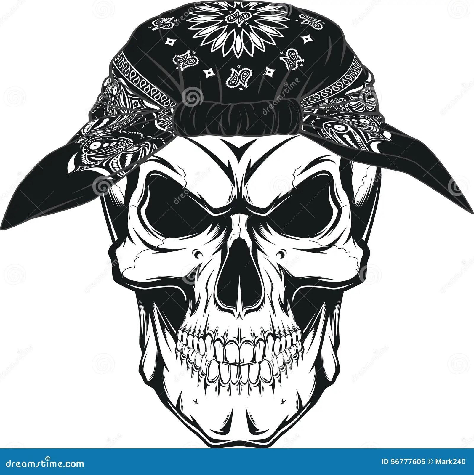 Human Skull Stock Vector Illustration Of Bone Human