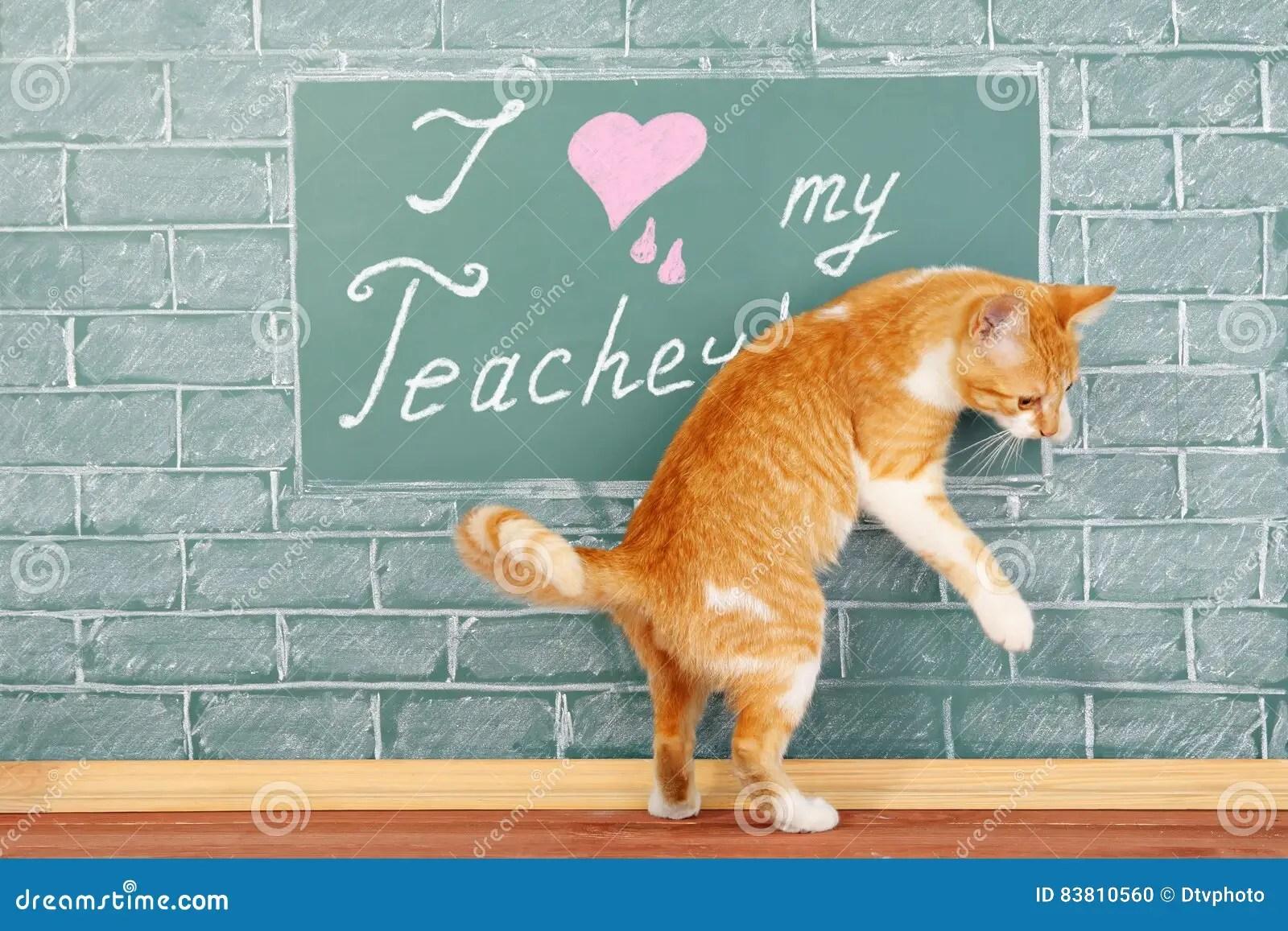 I Love My Teacher Stock Photo