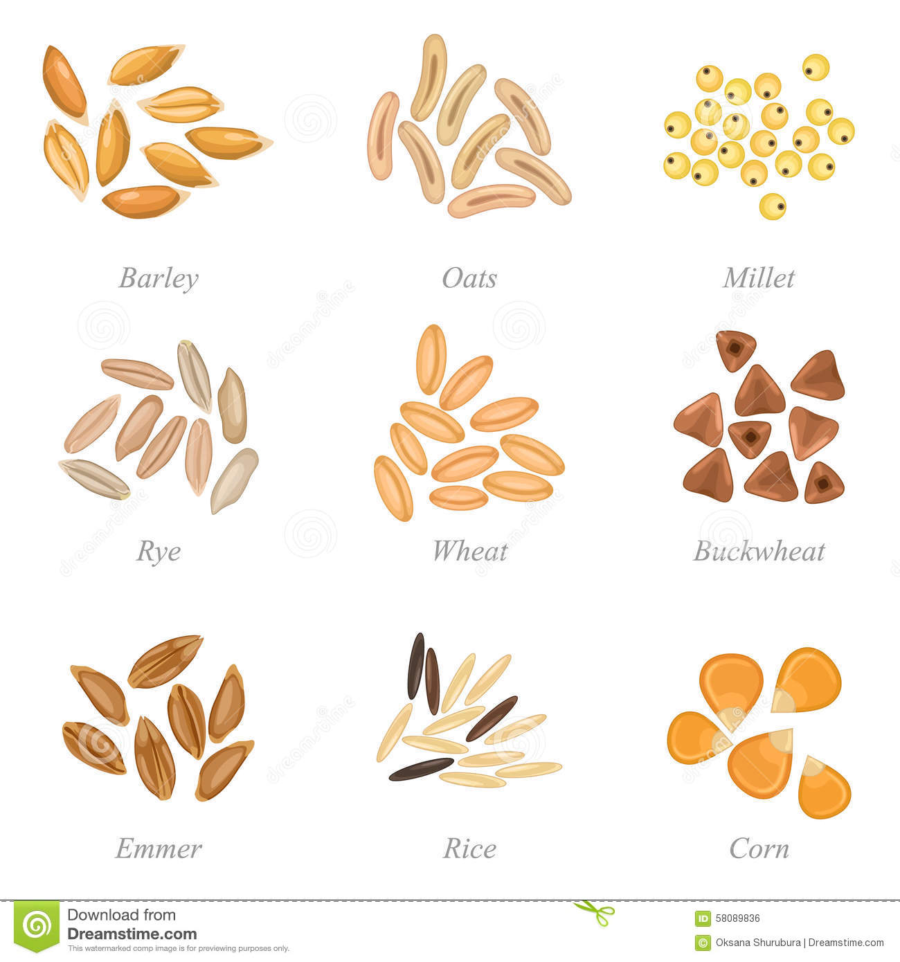Icon Set Of Cereal Grains Part 3 Stock Vector