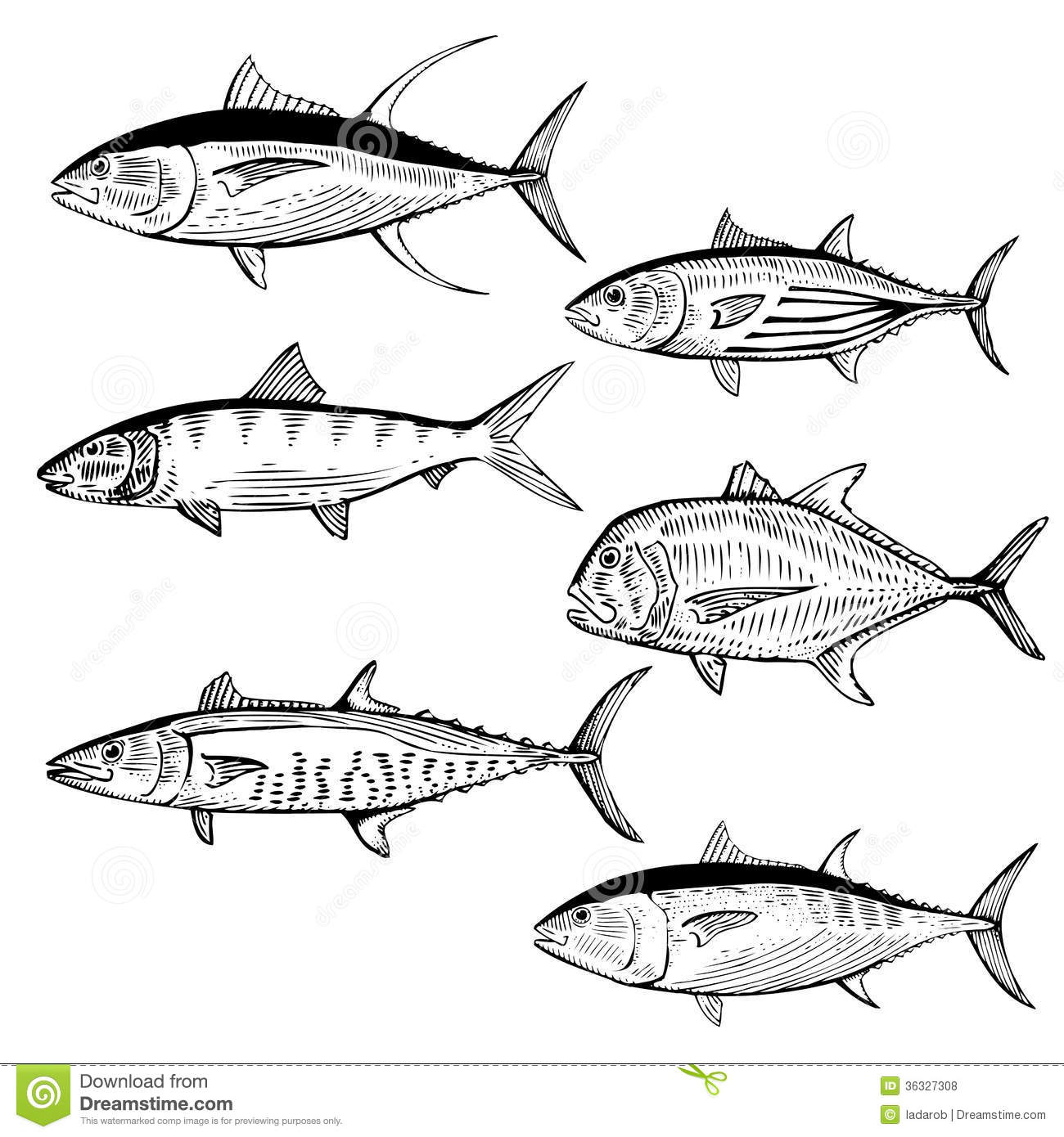 Bonefish Fish Vector Cartoon Vector