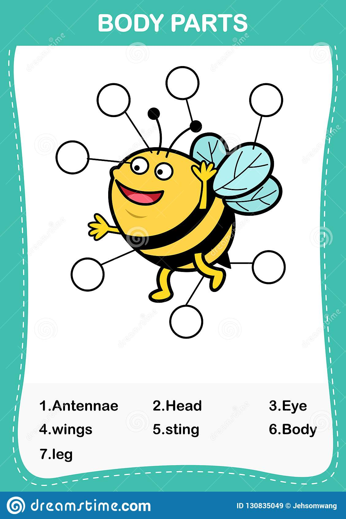 Bee Vocabulary Part Of Body Write The Correct Numbers Of
