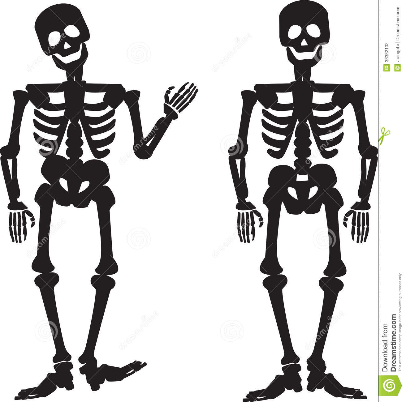 Illustration Of The Silhouette Of A Human Skeleton Stock