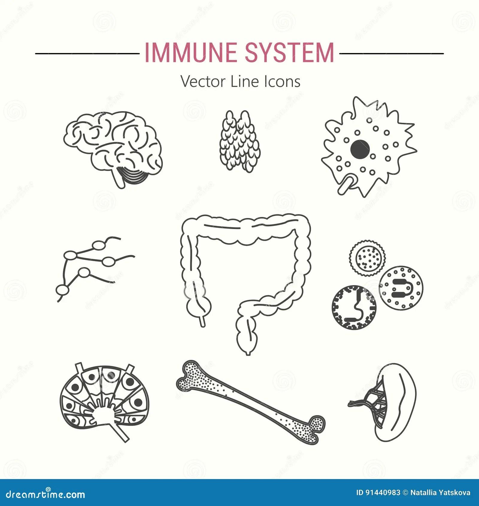 Immune System Icon Set Stock Vector Illustration Of Blood