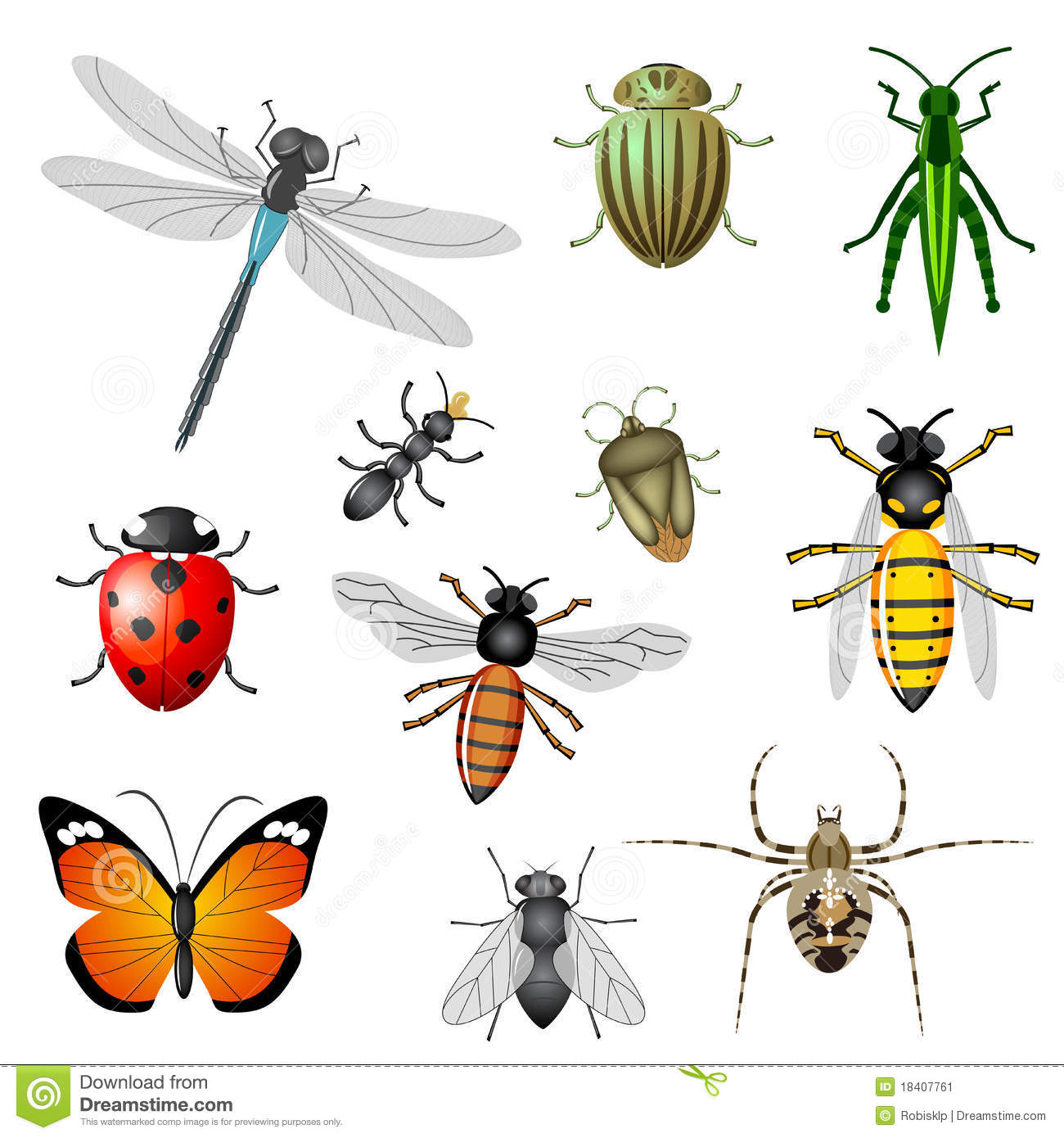 Bug And Insect Worksheet