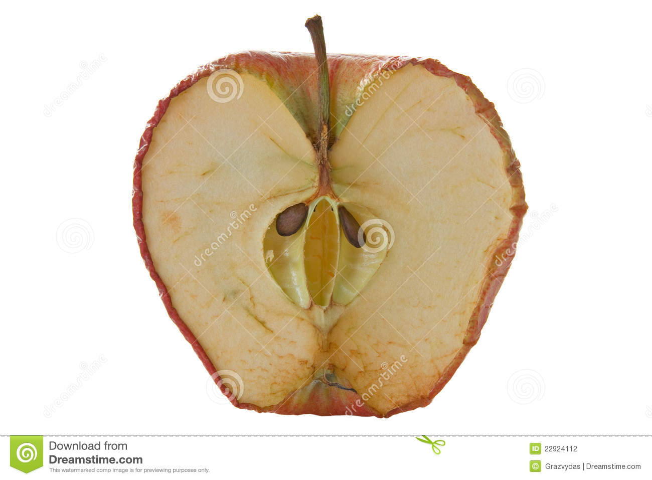 Inside Of An Old Apple Stock Photo Image Of Core