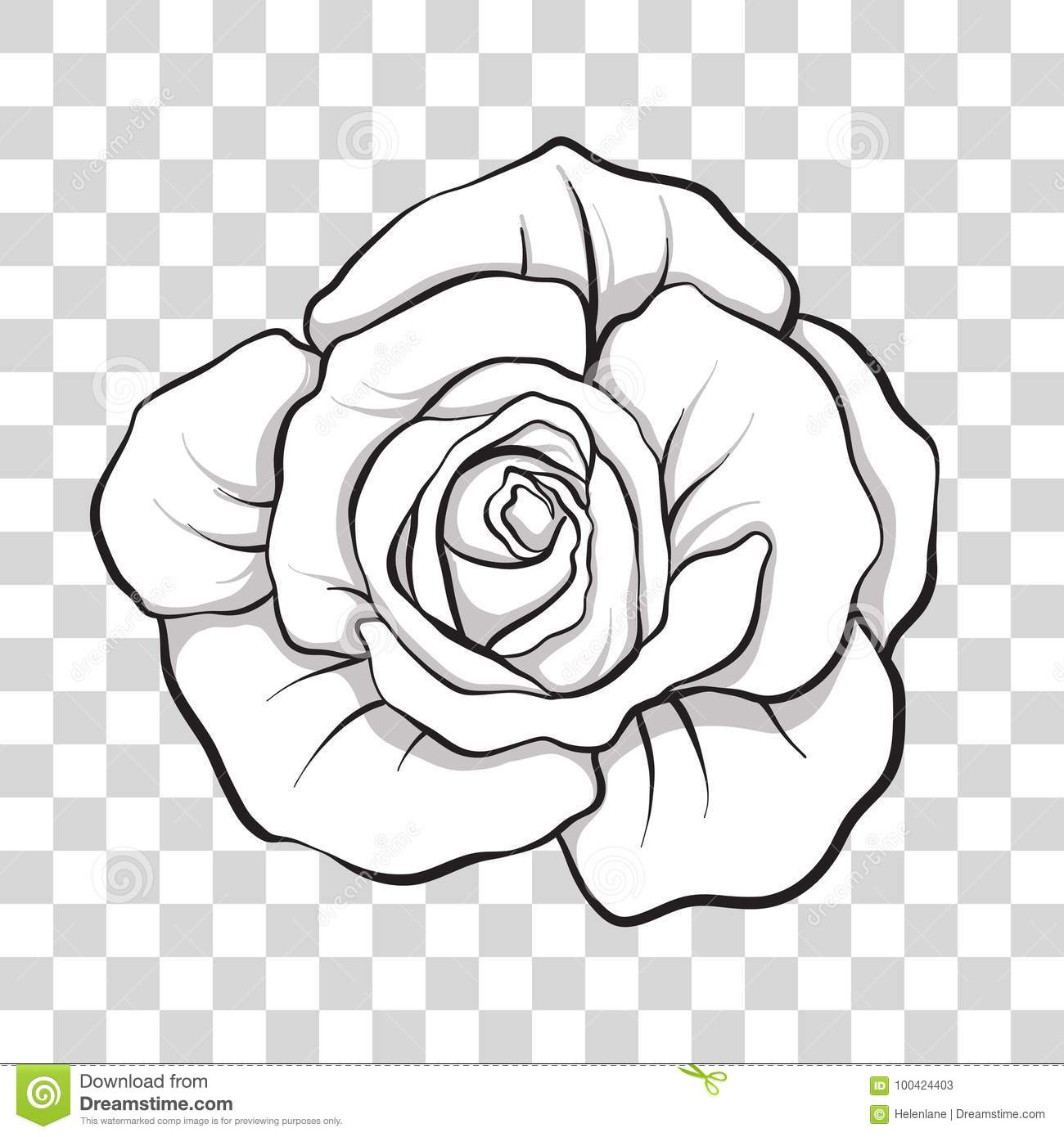 Isolated Outline Rose Flower Stock Vector Illustration
