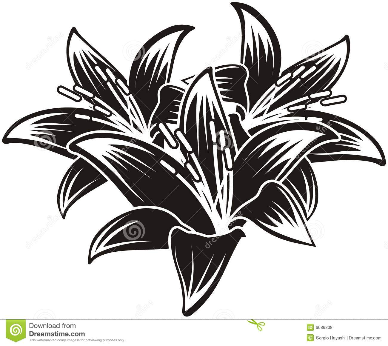 Isolated Vector Tropical Flowers Stock Vector