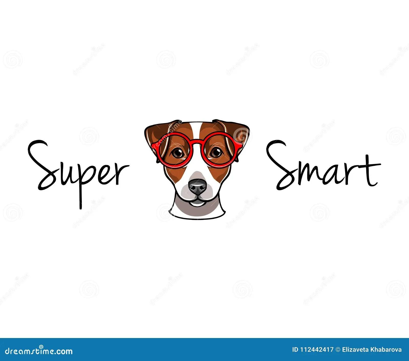 Jack Russell Terrier In Vetri Astuti Geek Del Cane