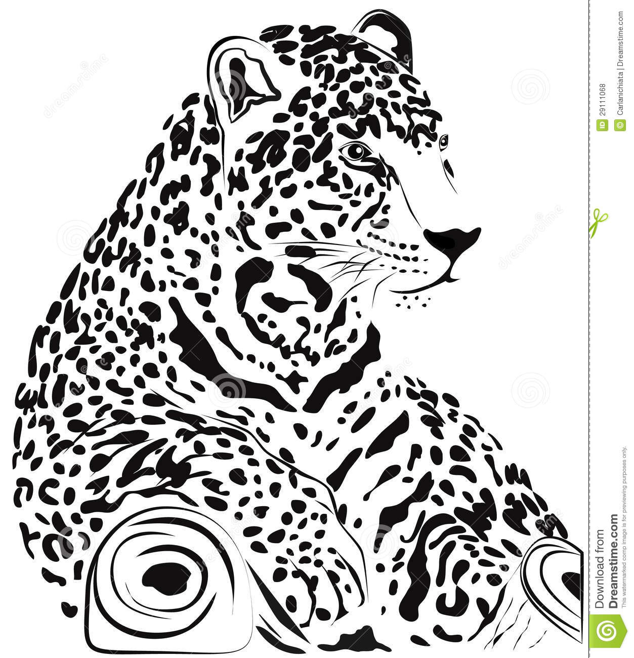 Jaguar Stock Vector Illustration Of Realistic Graphic