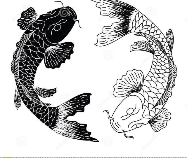 Black And White Hand Drawn Line Art Of Fish Koi Carp Vector Isolated Idea For Tattoo And Coloring Books