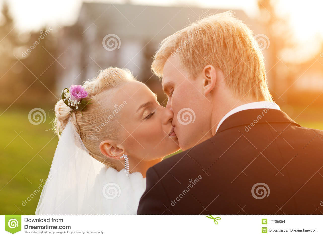 Just Married Couple Stock Photo Image Of Bride Hairstyle