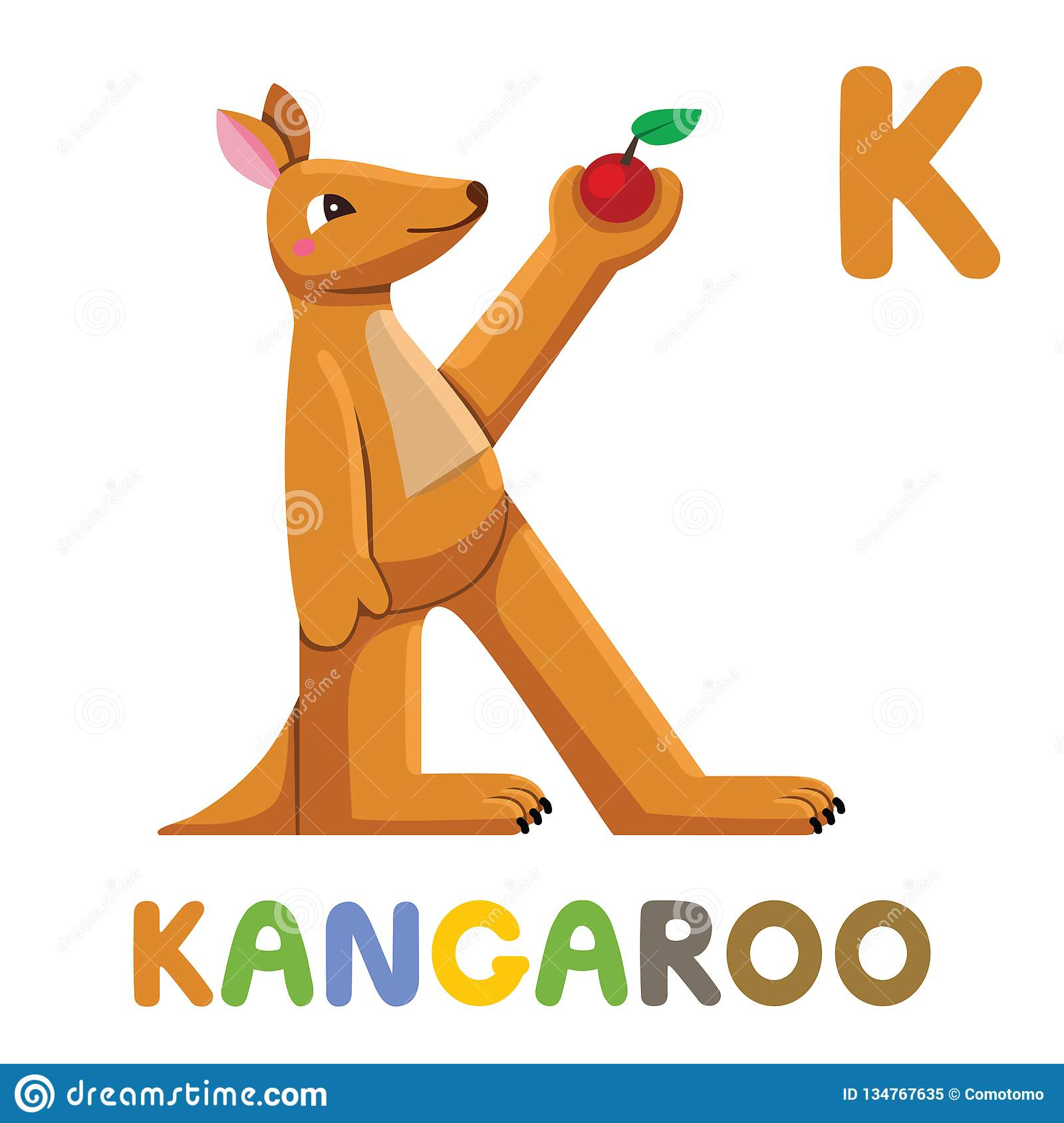 Kangaroo With Alphabet Stock Illustration
