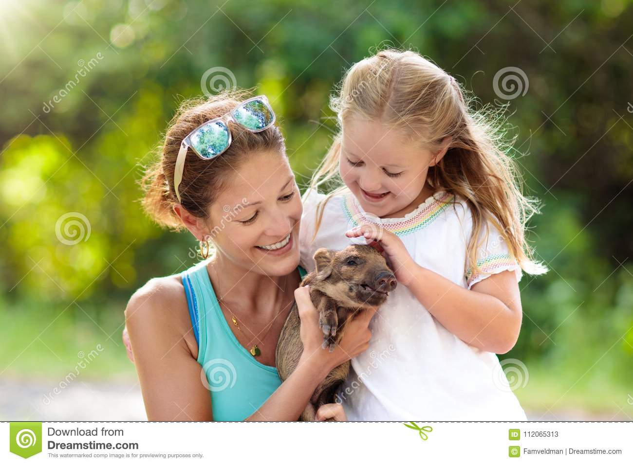 Kids And Farm Animals Child With Baby Pig At Zoo Stock Image