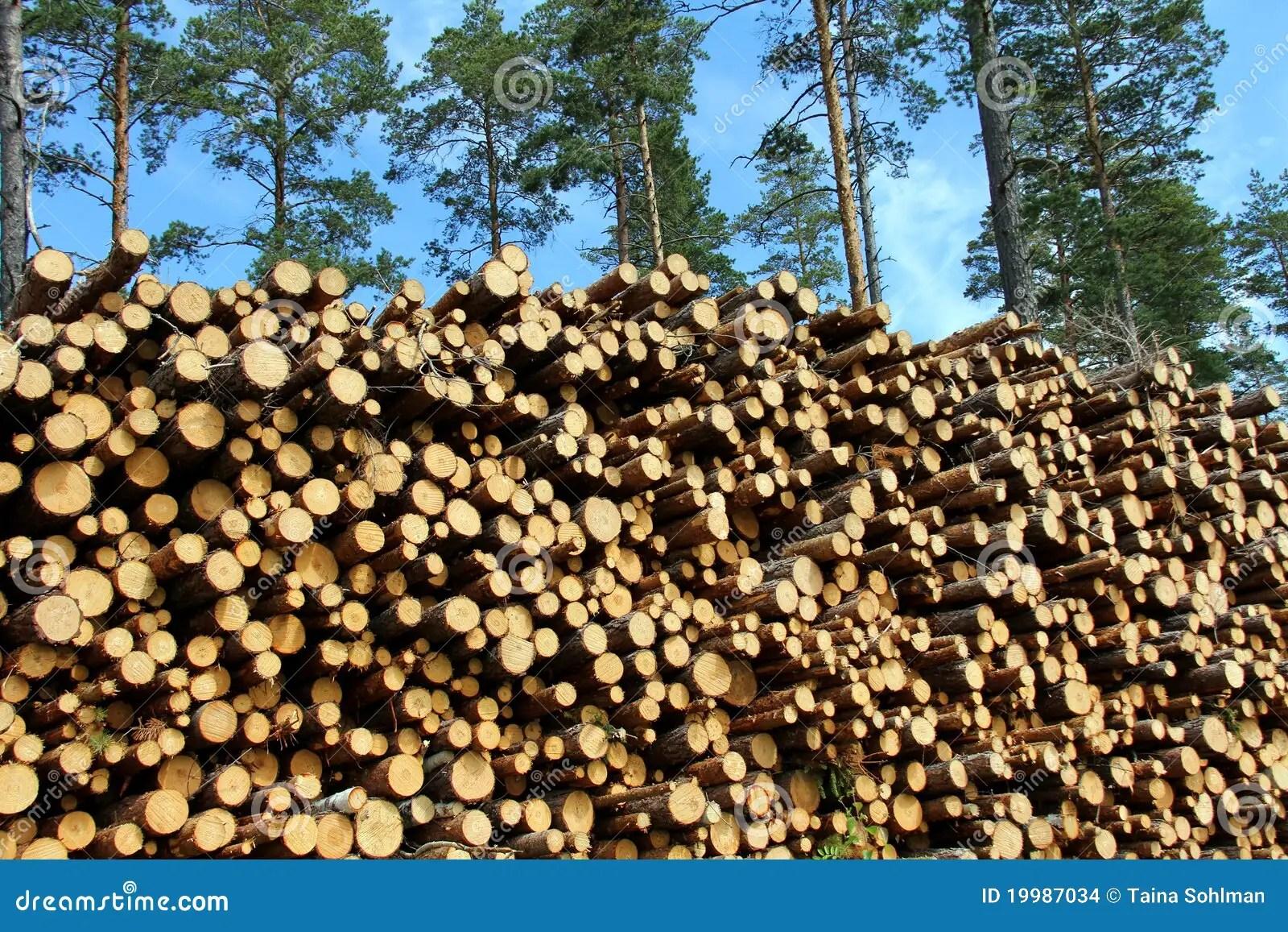 Renewable Resources Renewable Resources Wood