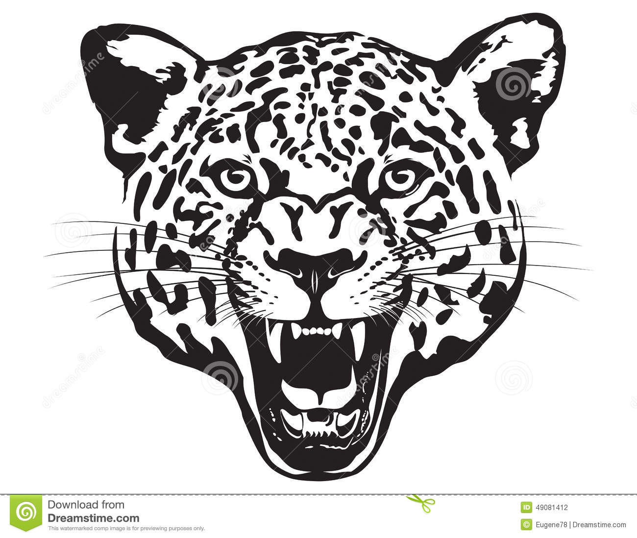 Leopard Head Illustration Stock Vector