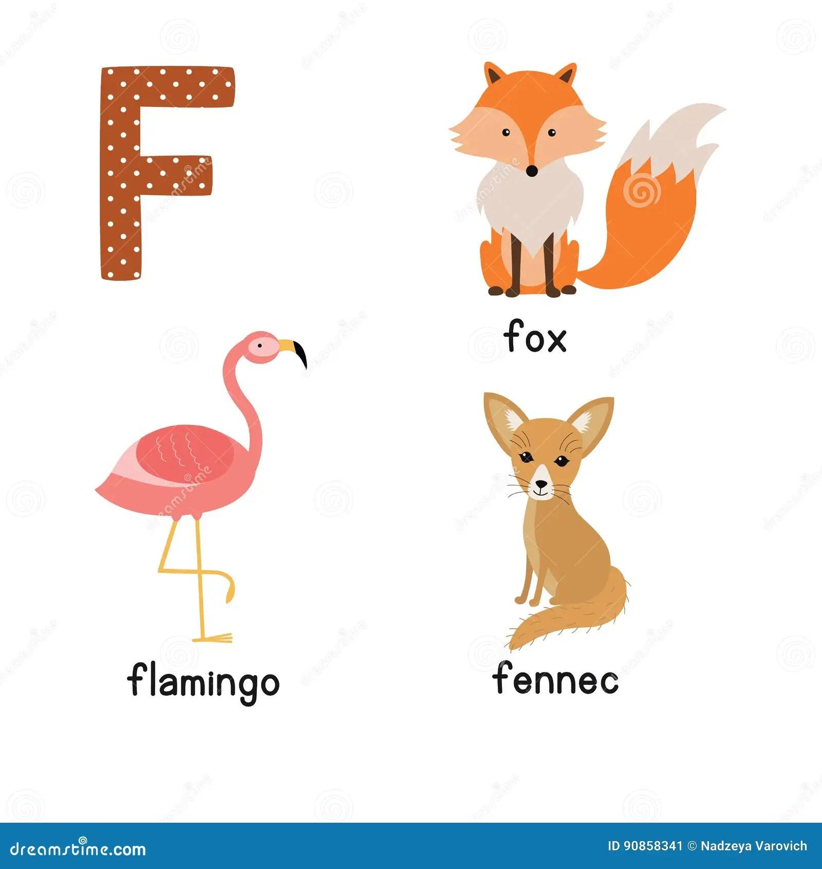 Letter F Cute Animals Flamingo Fennec Fox Funny Cartoon
