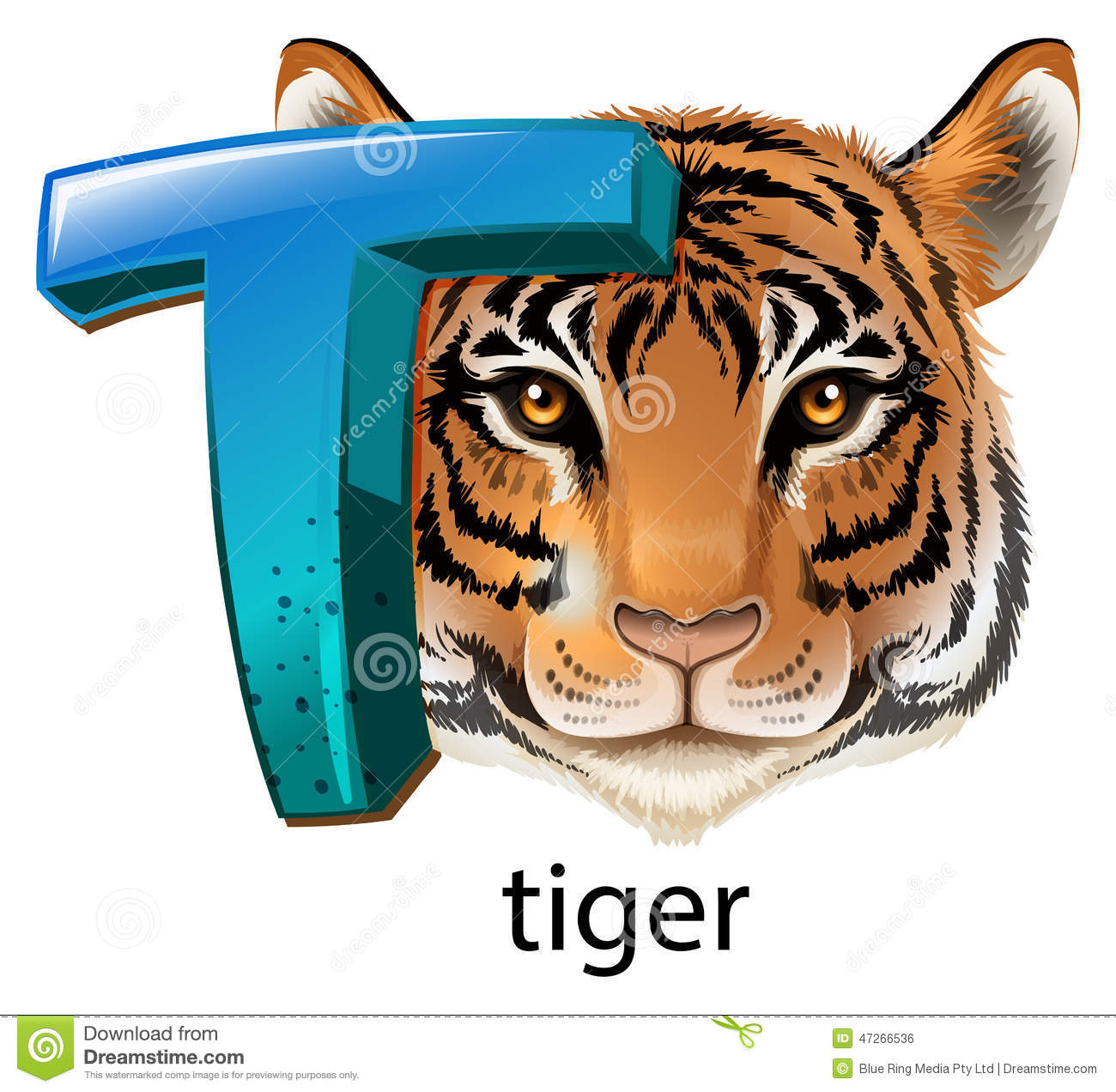 A Letter T For Tiger Stock Vector Illustration Of