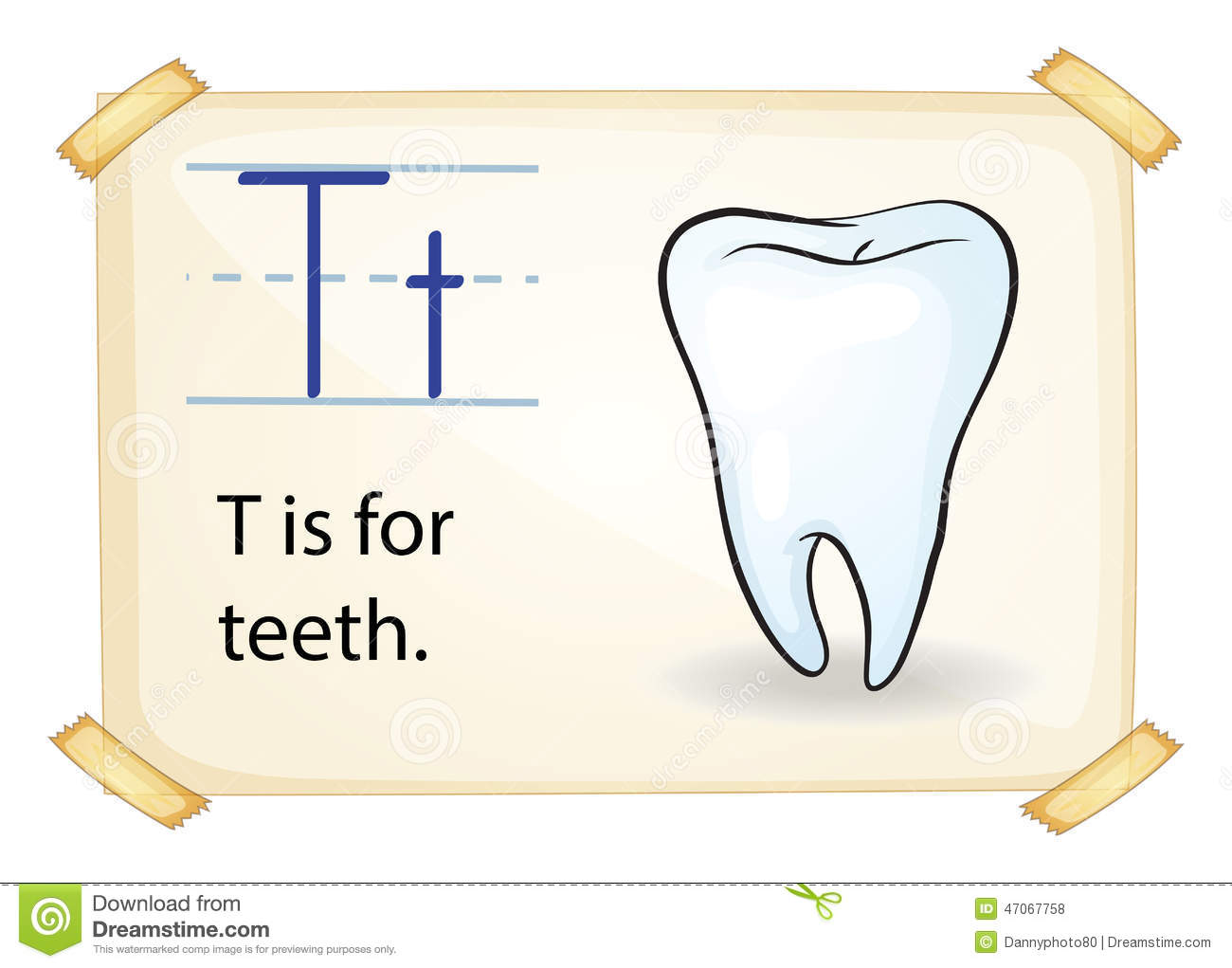 A Letter T For Tooth Stock Vector Illustration Of School