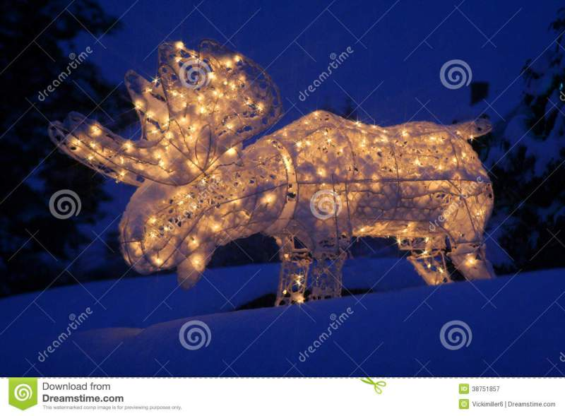 Lighted Moose At Christmas