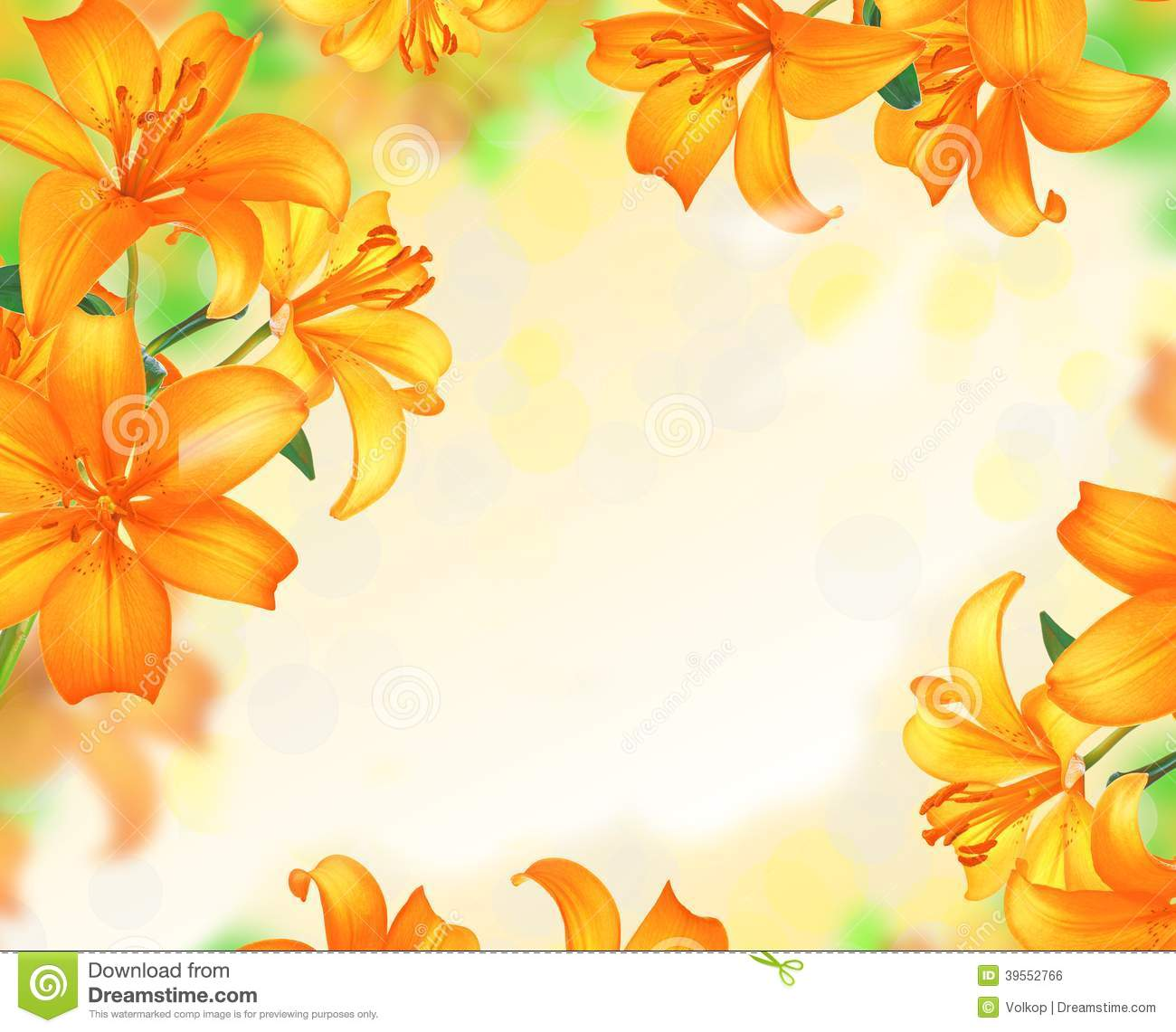 Lily Flowers Border Design Stock Photo