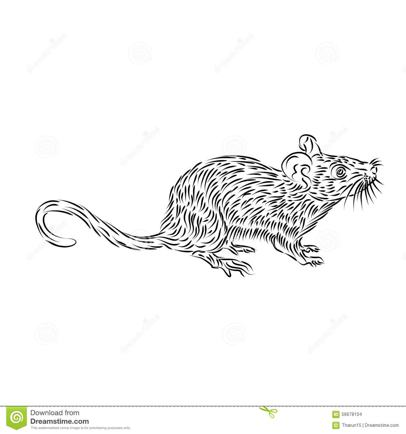 Line Drawing Of A House Mouse Stock Illustration