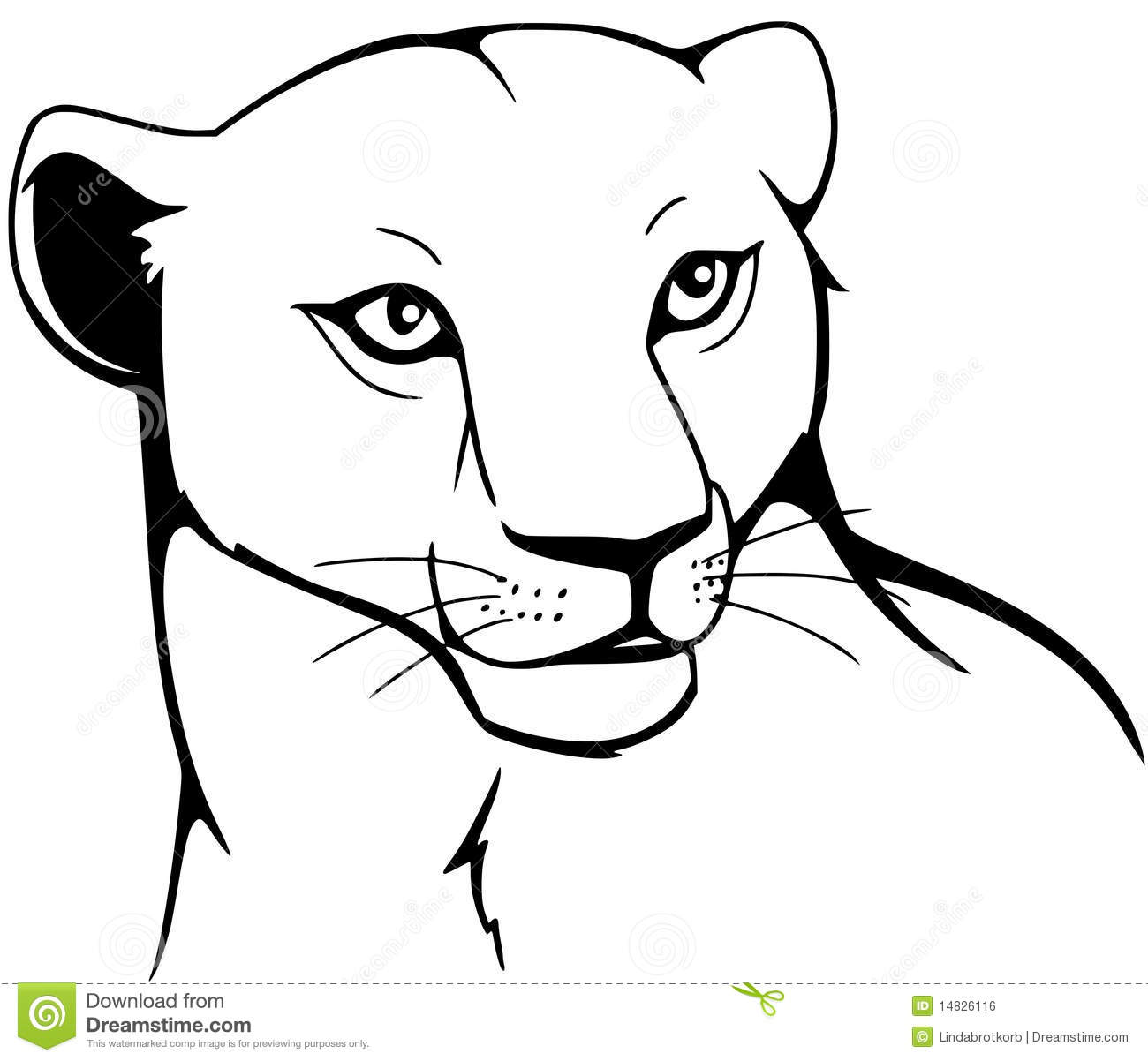 Lioness Cartoons Illustrations Amp Vector Stock Images
