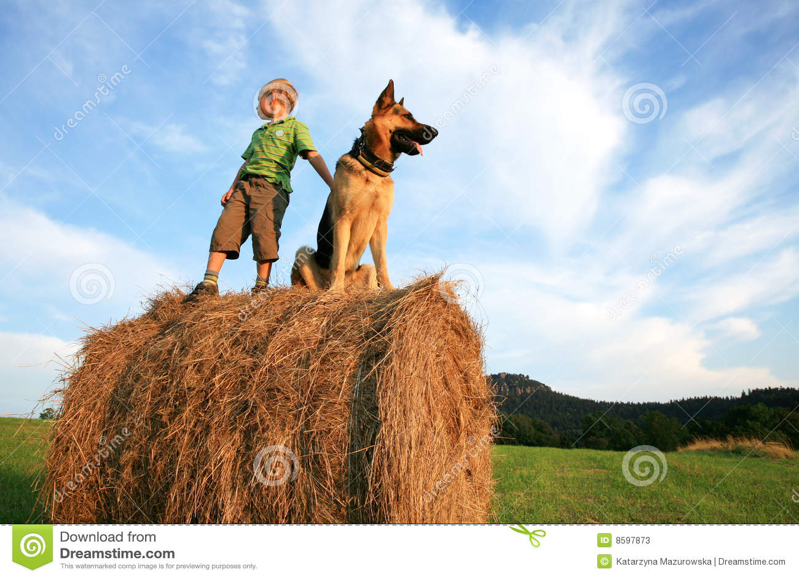 Little Boy Big Dog Stock Images