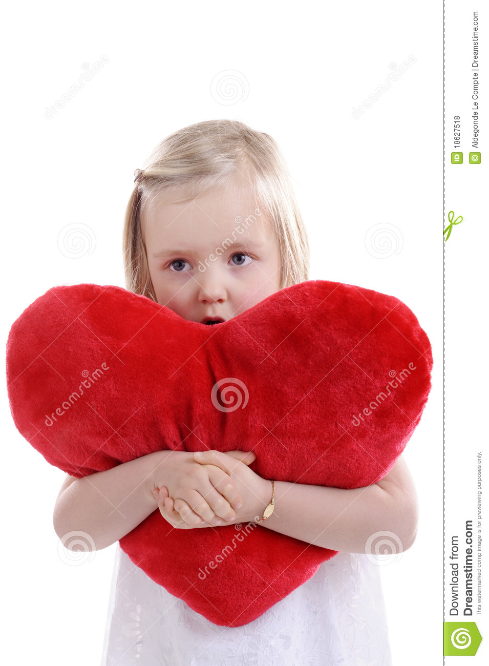 Heart Shaped Pillow With Picture Word 2007 Header Image