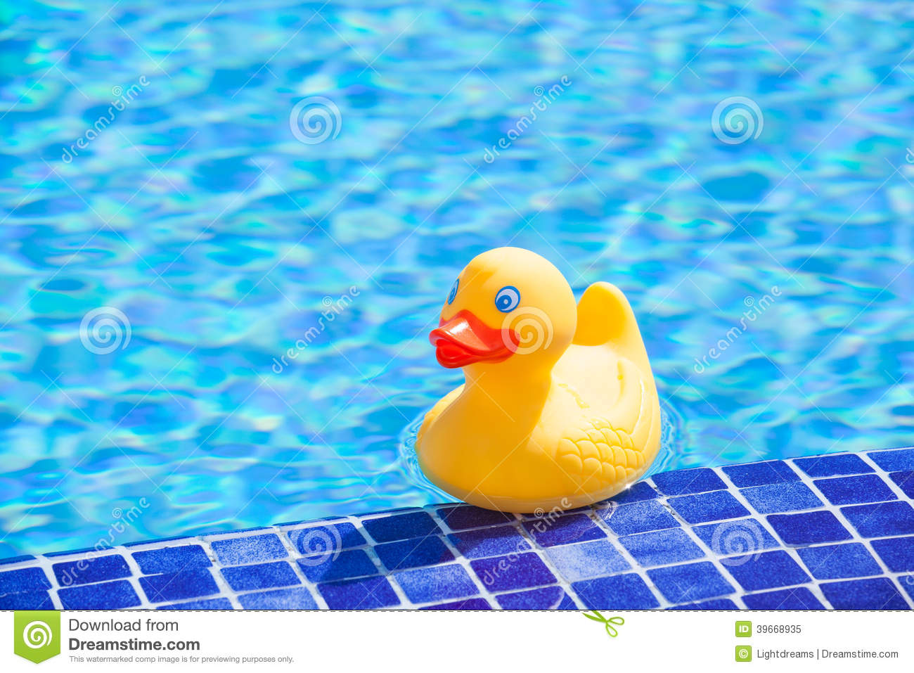 Little Yellow Rubber Duck Stock Image Image Of Child
