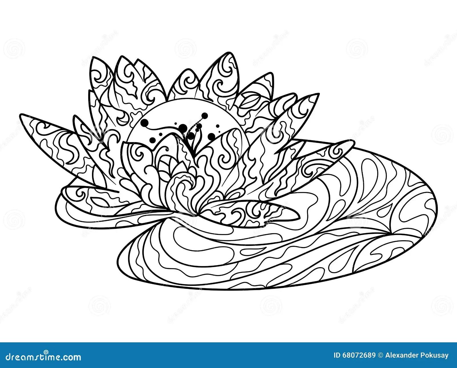 Livre De Coloriage De Fleur De Lotus Pour Le Vecteur D