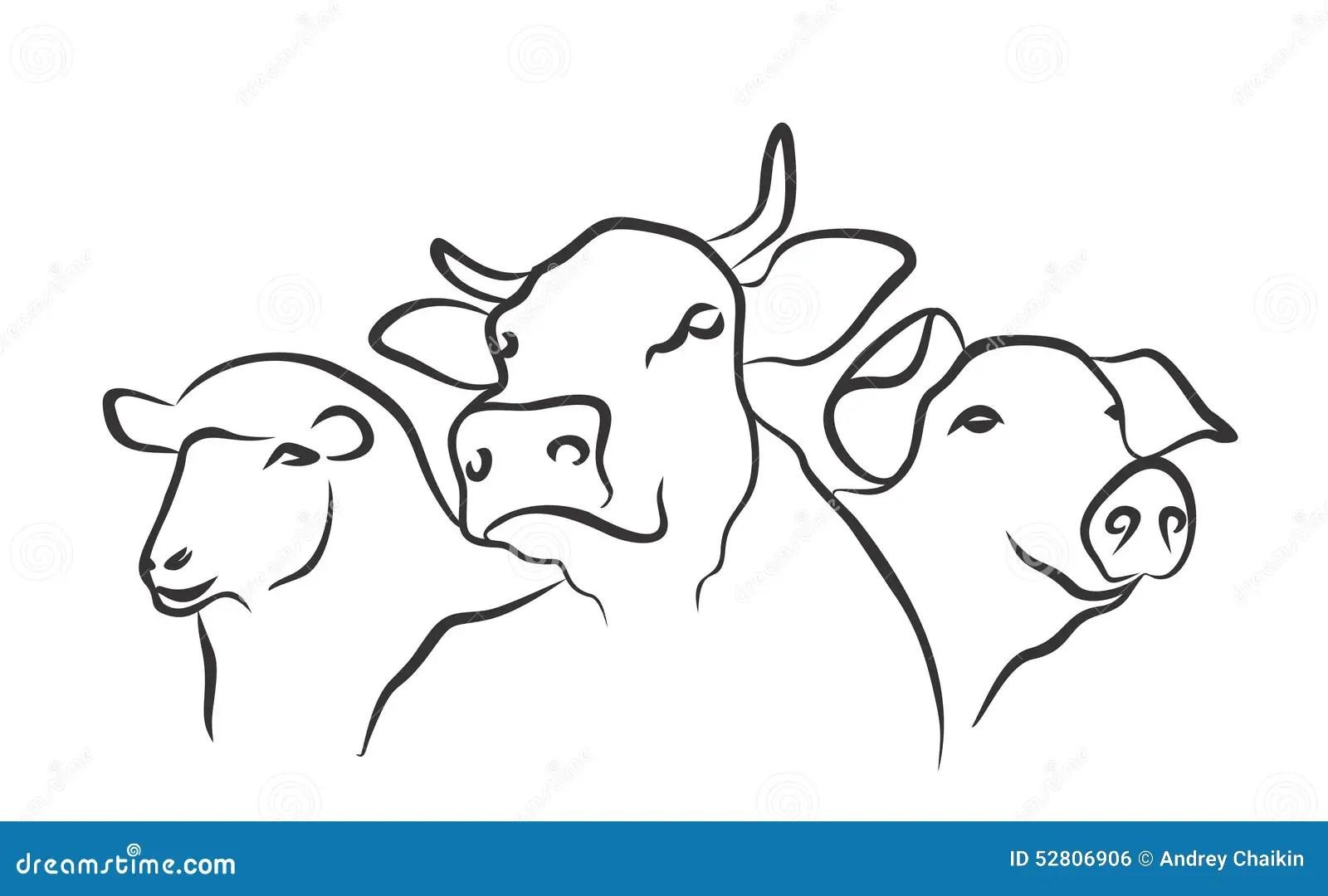 Logo Farm Stock Vector Illustration Of Mutton Vector