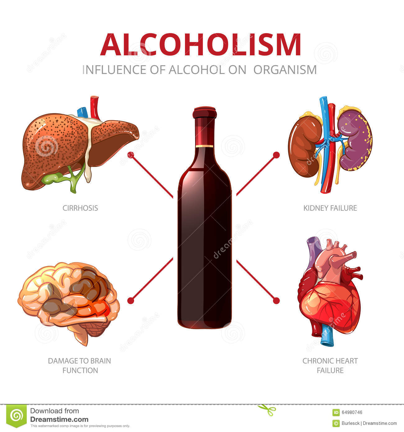 Your Brain And Alcohol Worksheet