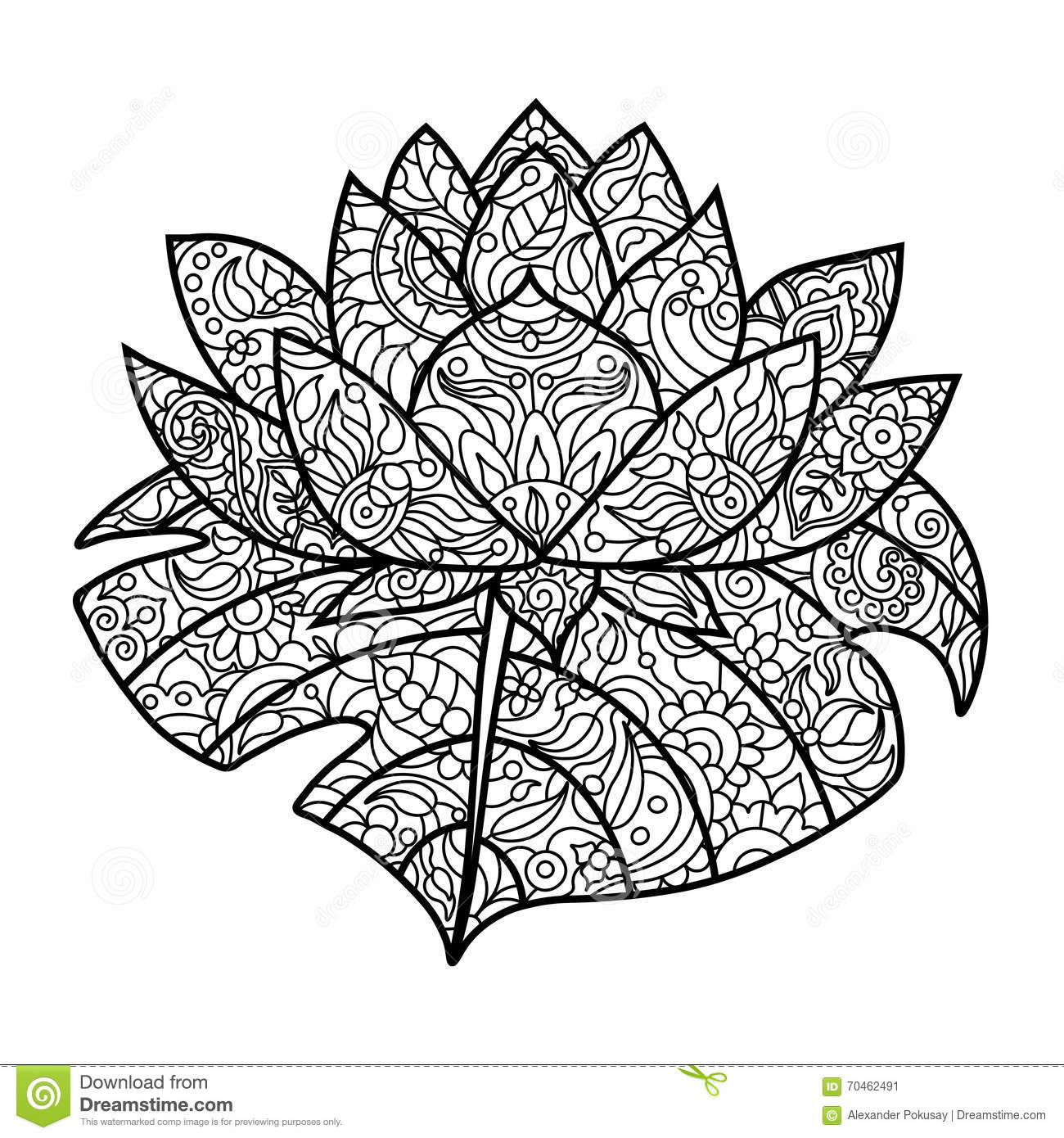 Lotus Flower Coloring Book For Adults Vector Stock Vector
