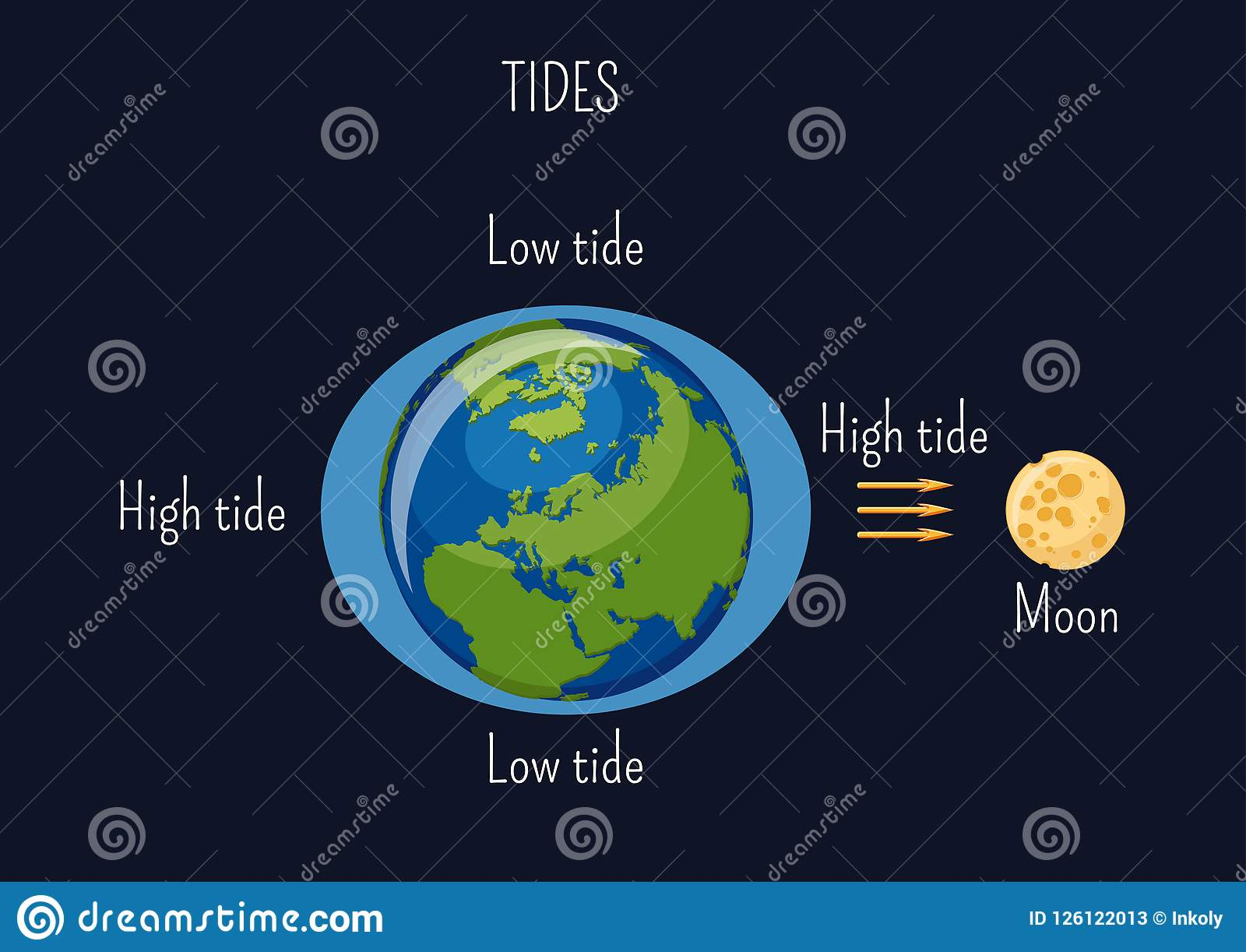 Low And High Lunar Tides Diagram Effect Of Moon