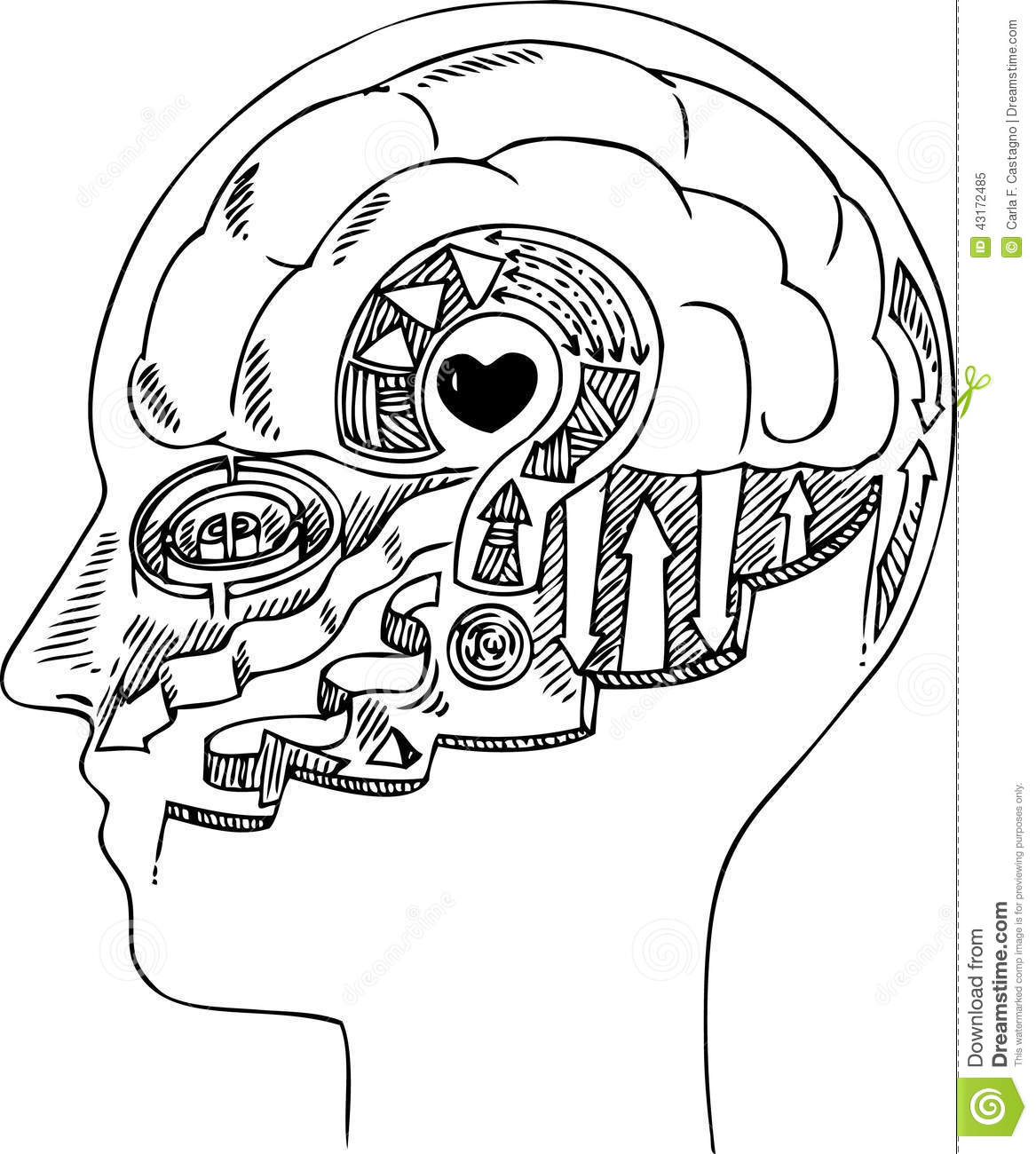 Man Profile With Brain And Heart Stock Illustration