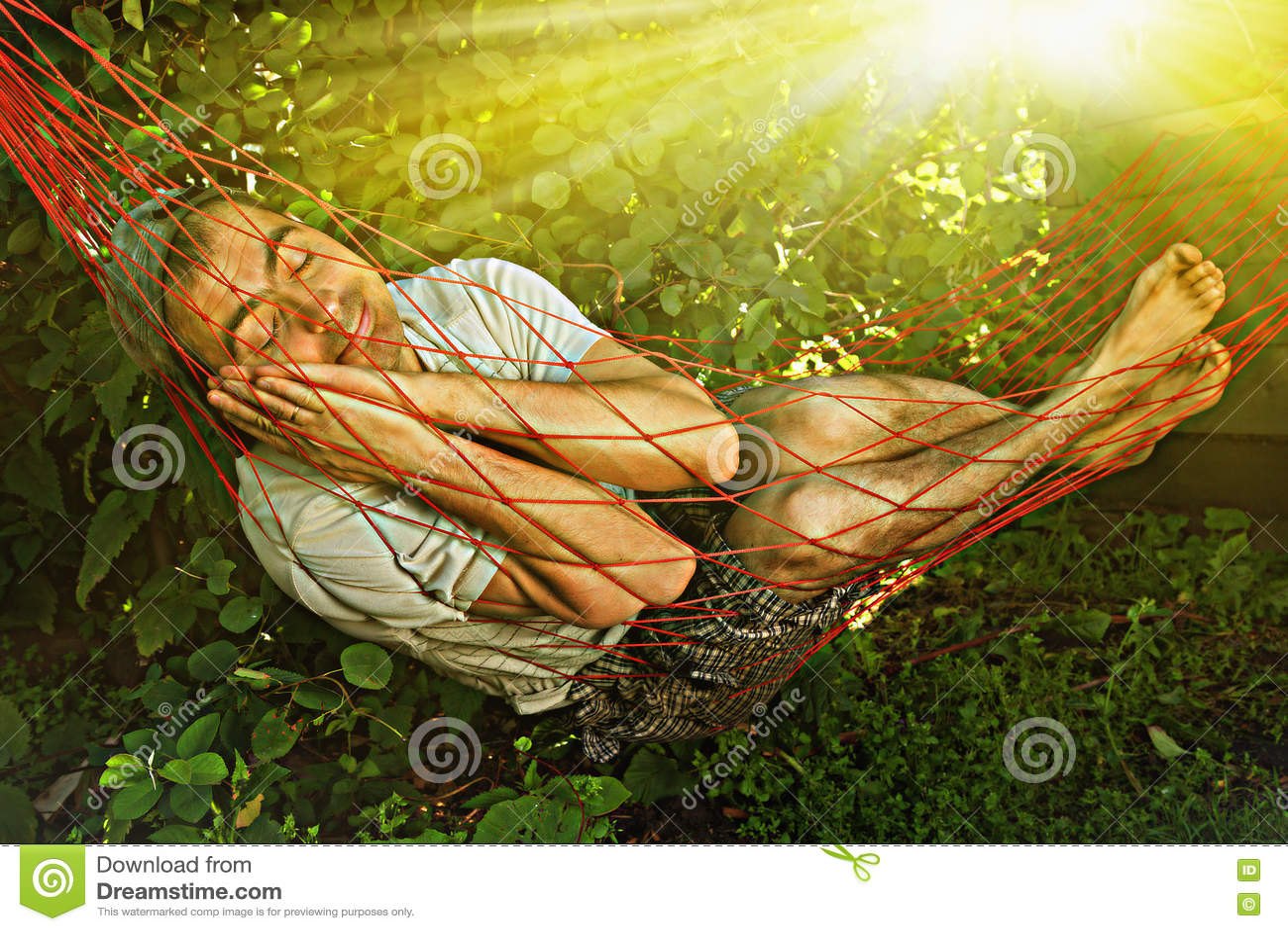 Man Sleeping In Hammock Stock Image Image Of Happy