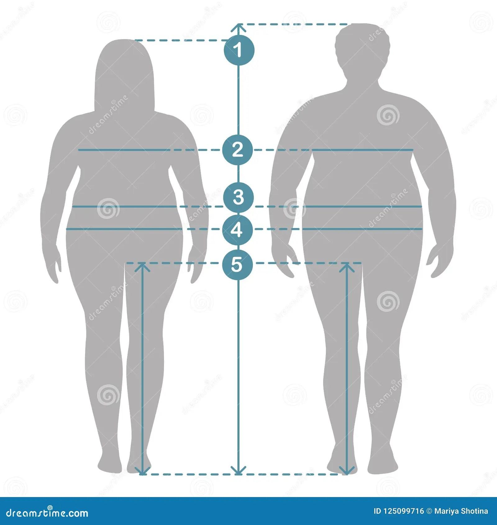 Man And Women Clothes Plus Size Measurements Human Body