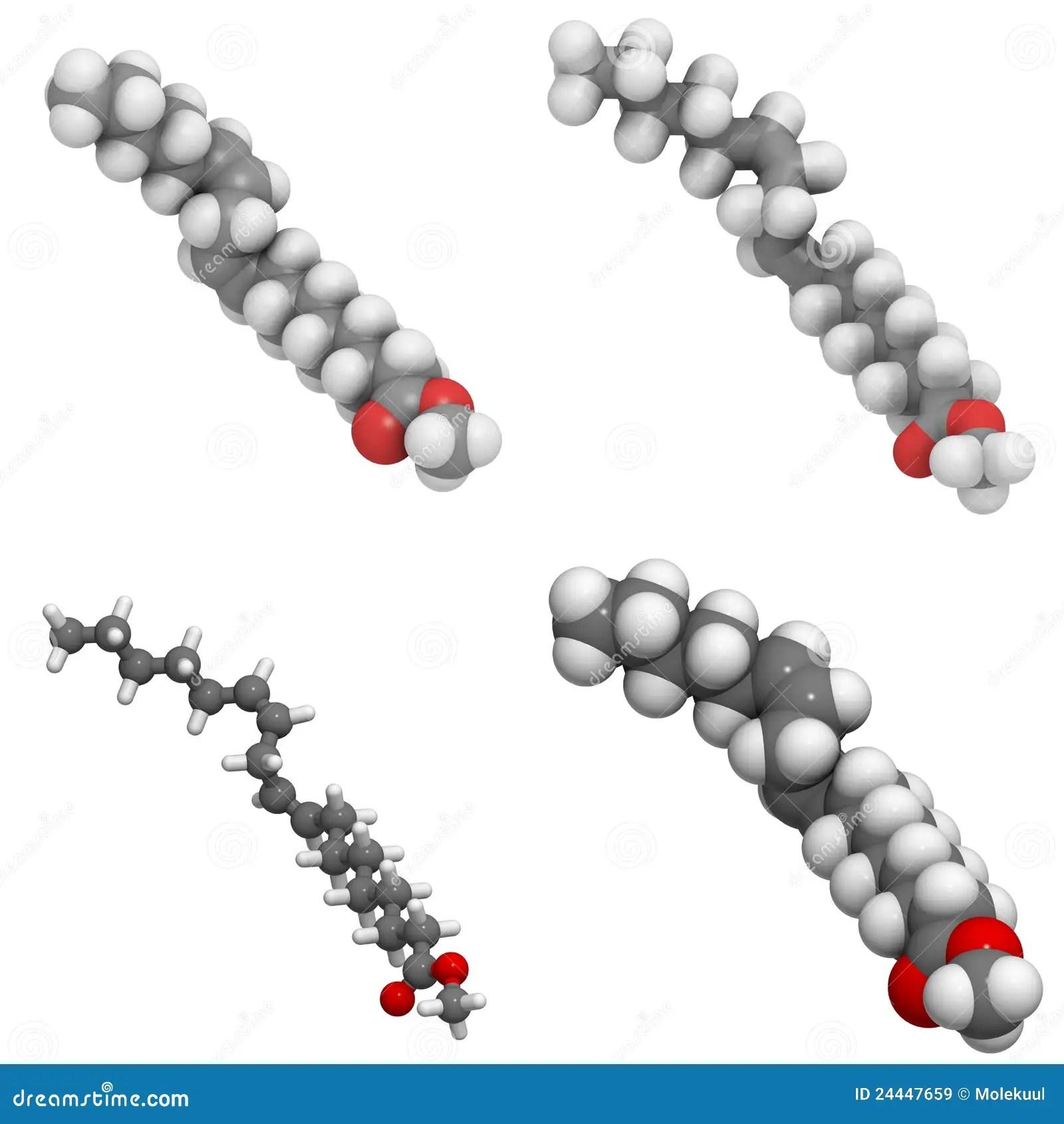 Methyl Lineolate Bio Sel Molecule Stock Illustration