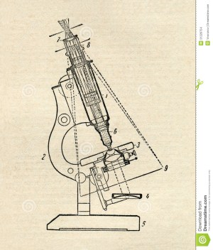 Microscope Diagram Stock Images  Image: 31226754