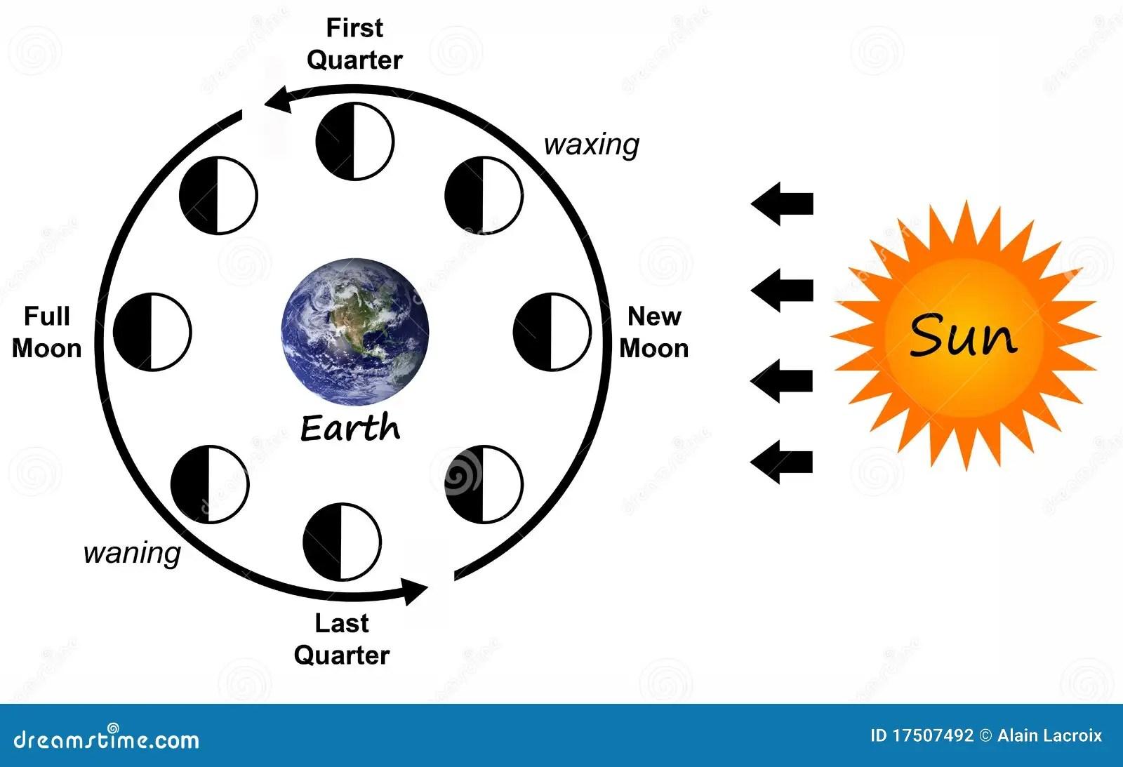 Mondphasen Stock Abbildung Illustration Von Phasen