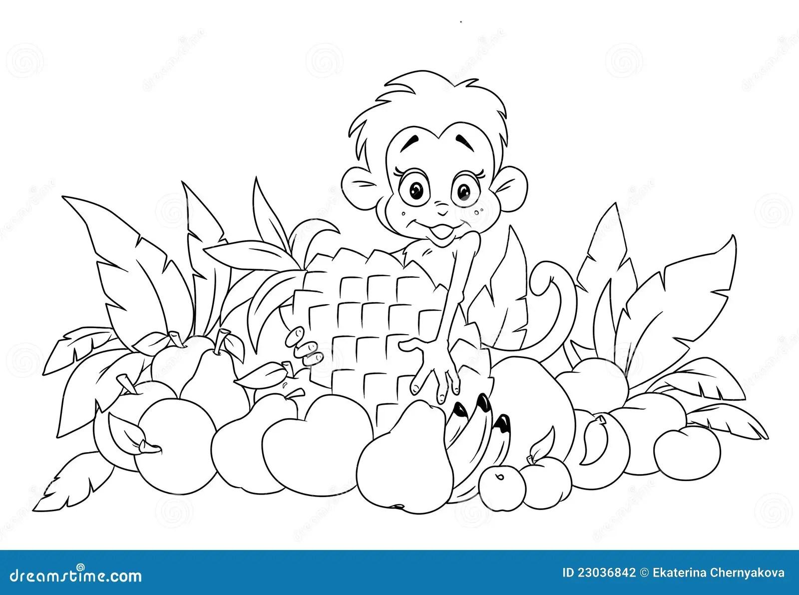 Monkey And Fruit Stock Photography