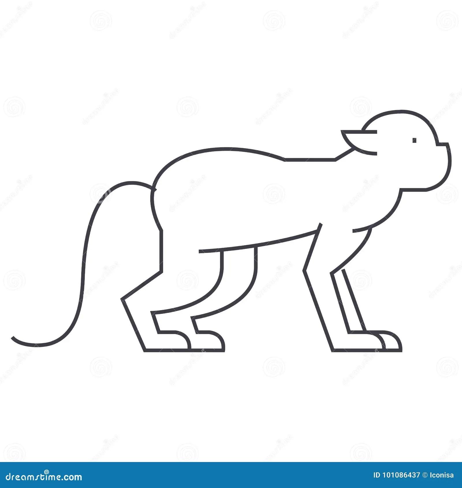Baboon Cartoon Character Cartoon Vector