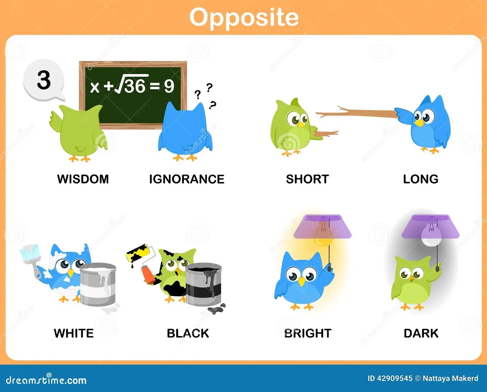 Voorsetsels Worksheet For Grade 3